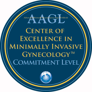 AAGL Center of Excellence in Minimally Invasive Gynecology Commitment Level
